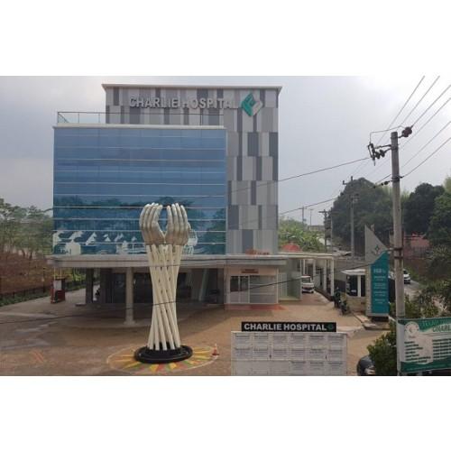 Charlie Hospital Semarang